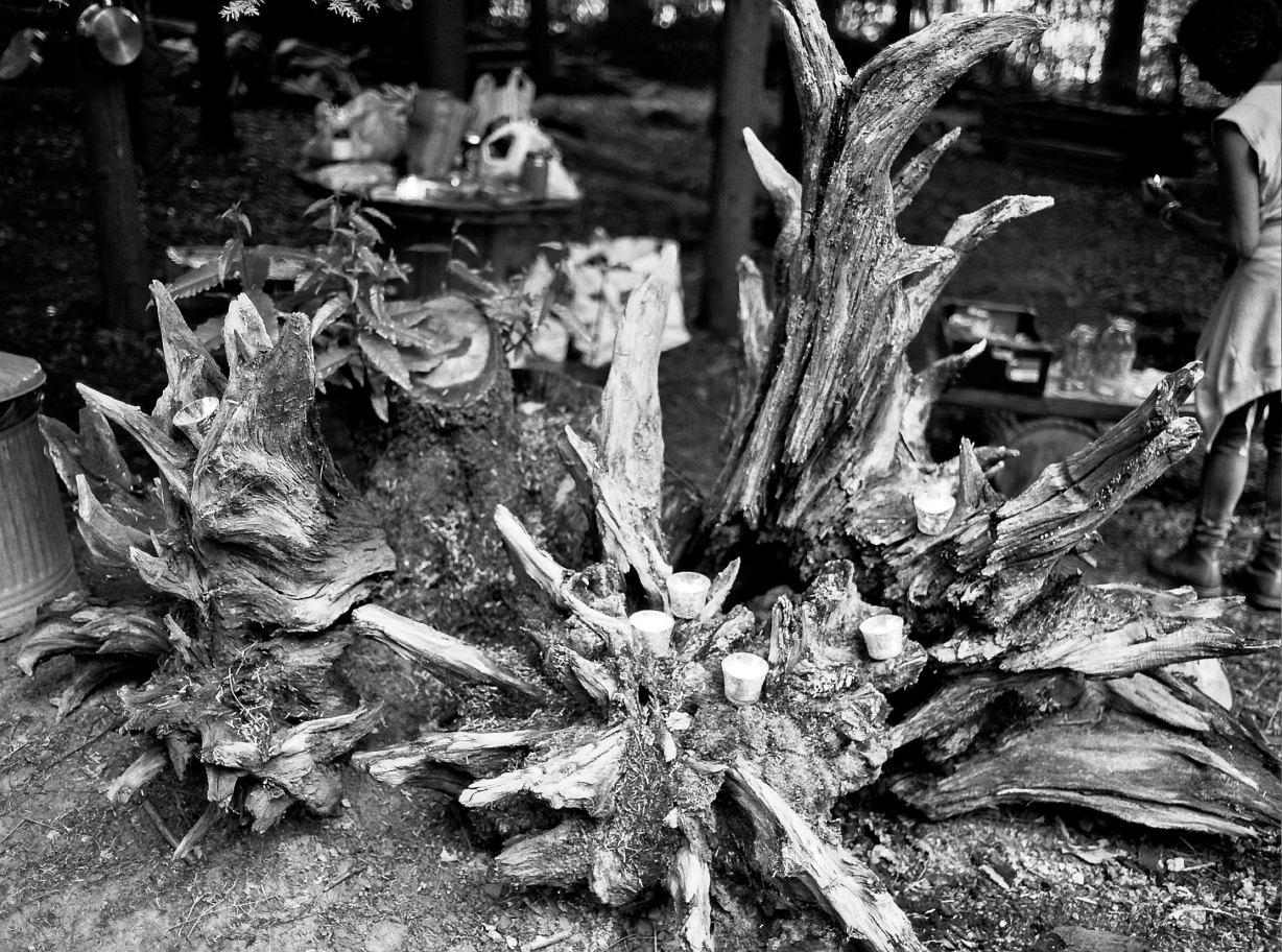 (F) Ilford HP5 A party was held in the woodland .