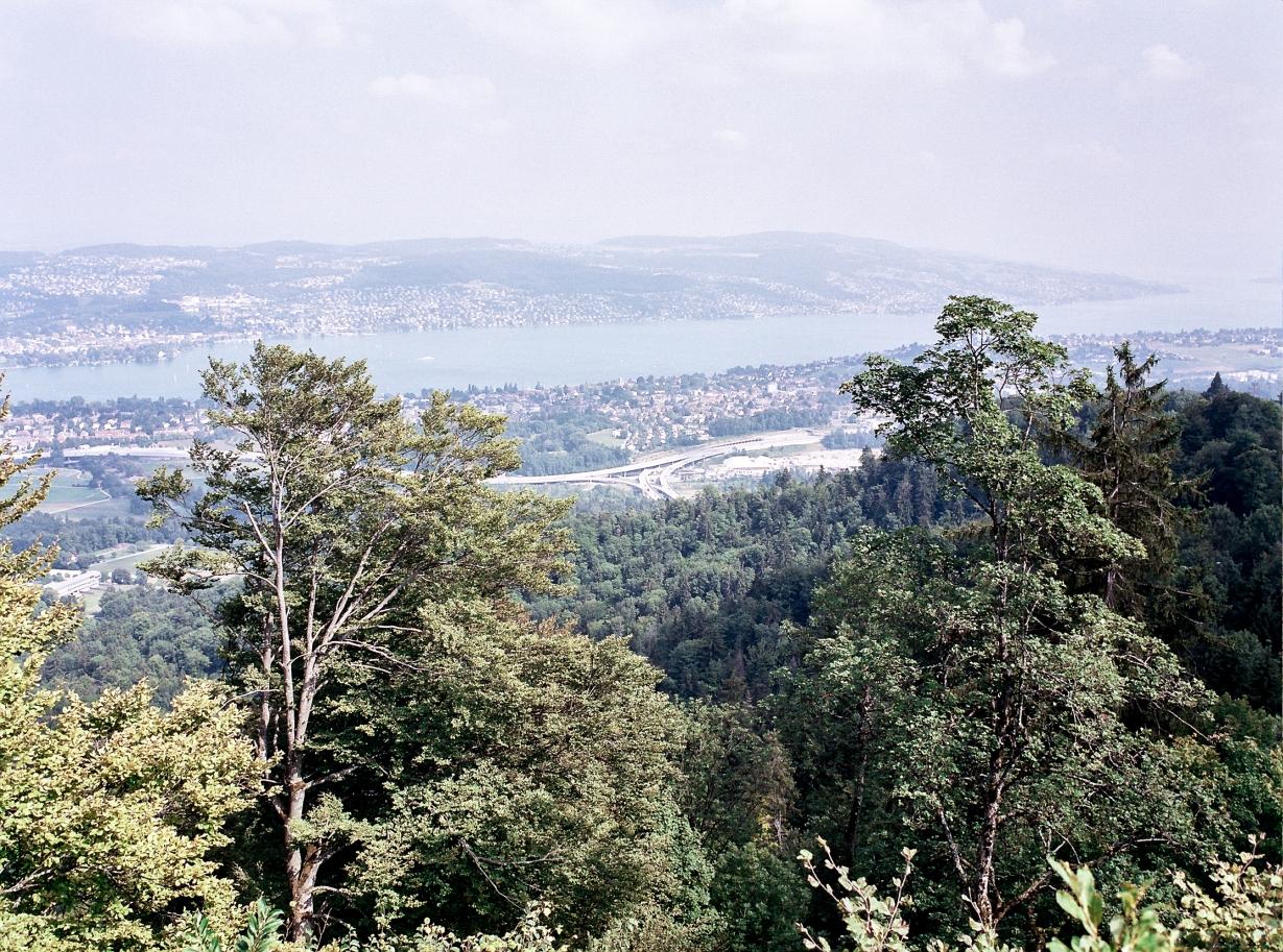 Lake Zurich disappears off into the haze. (F) Kodak Portra